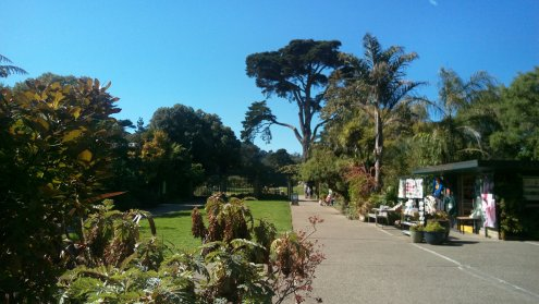 植物園 San Francisco Botanical Garden